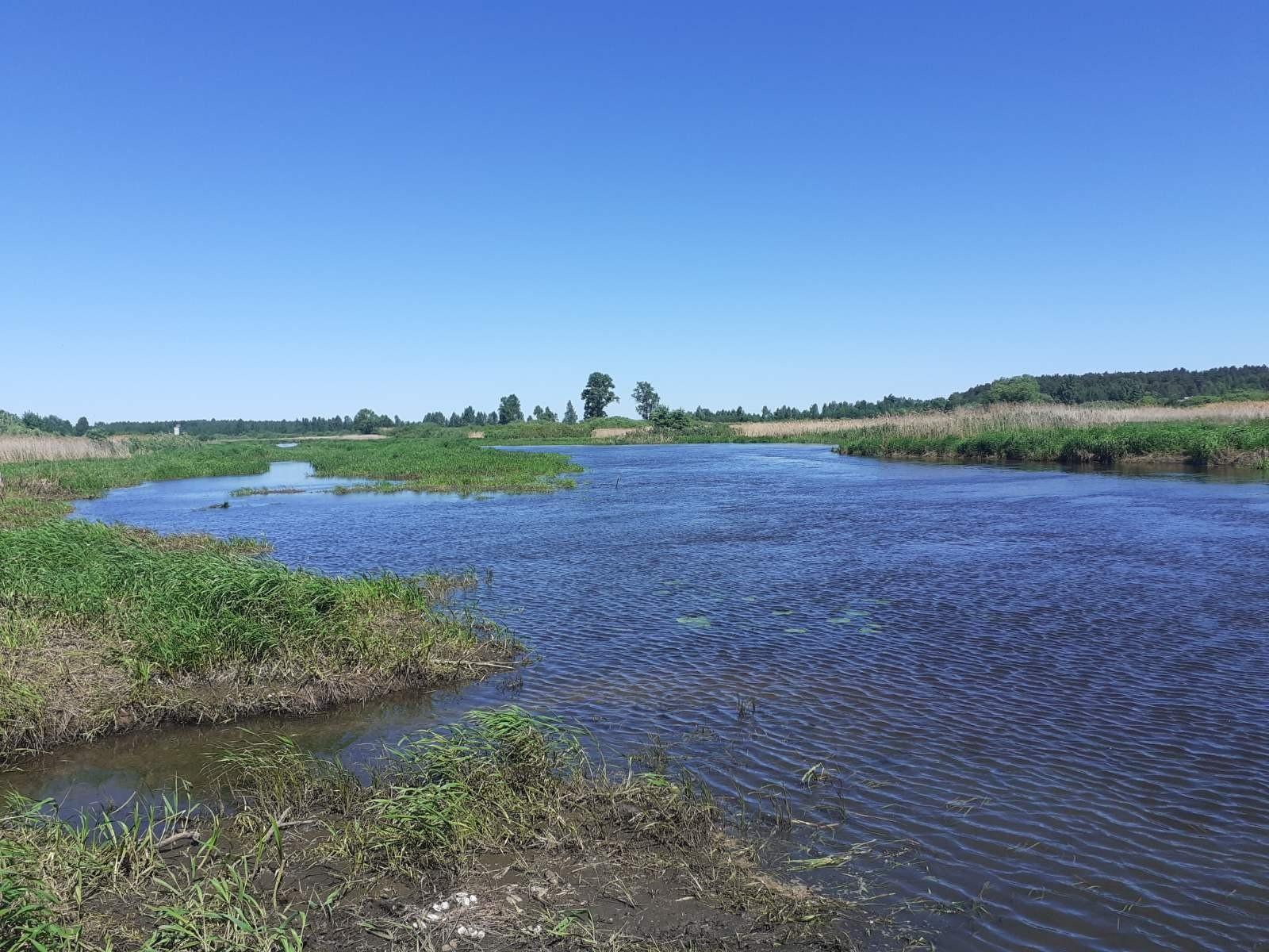 Происшествие на воде в н.п. Вознесенье Савинского м.р. в акватории реки Уводь.